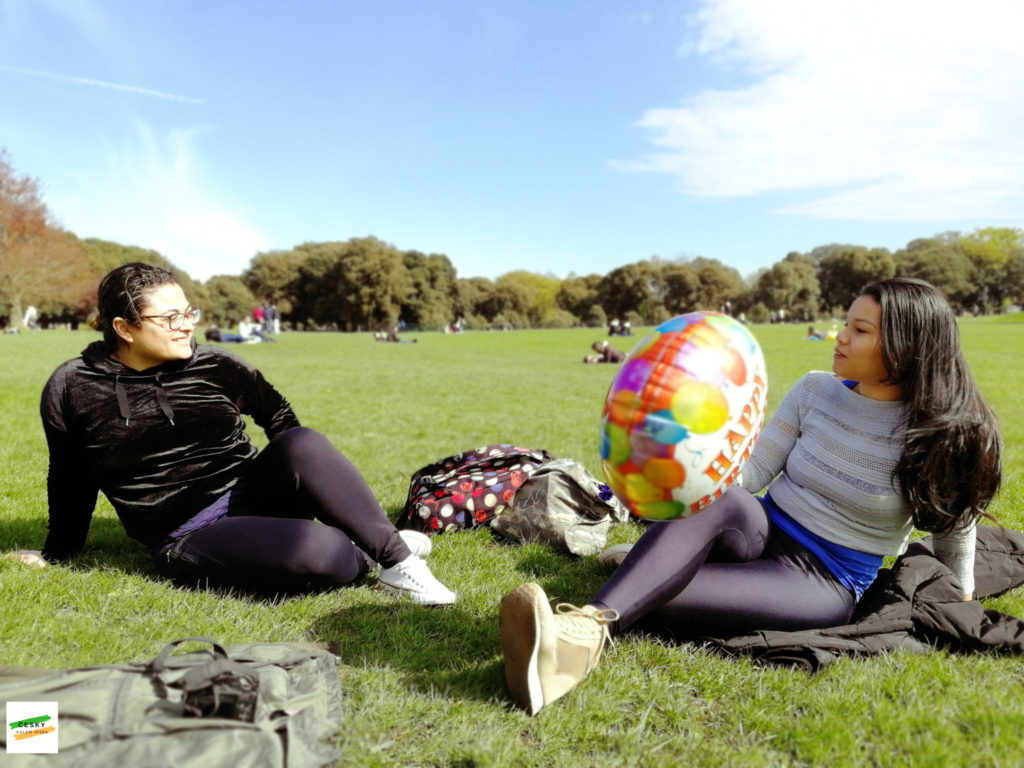 friends in Phoenix park, Dublin