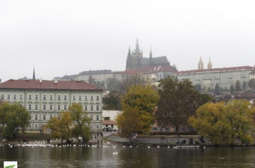 Po sedmi letech v Praze